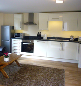 Luxury one bed apartment with beautiful kitchen dining room